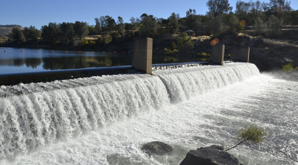 Feather river hatchery fish ladder to open sept 14 cdfw for Feather river salmon fishing