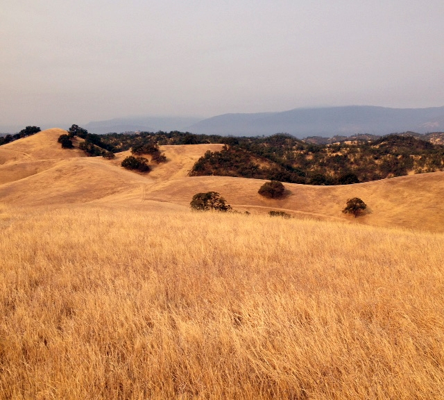 foothills covered in dry, golden grasses