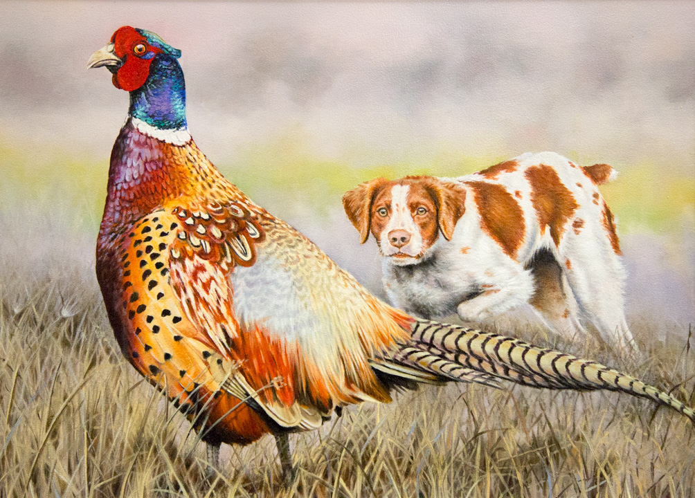 Ring Necked Pheasant on Branch Country Artists Birds