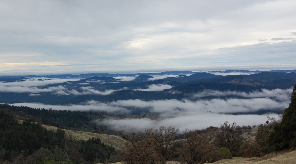 view of coast range and low clouds from a higher hillside