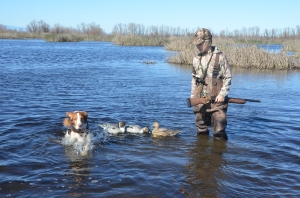 Youth hunters learn to set out decoys and work with hunting dogs during Youth Hunting Days
