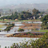 Devereux Slough, Santa Barbara County. WCB photo