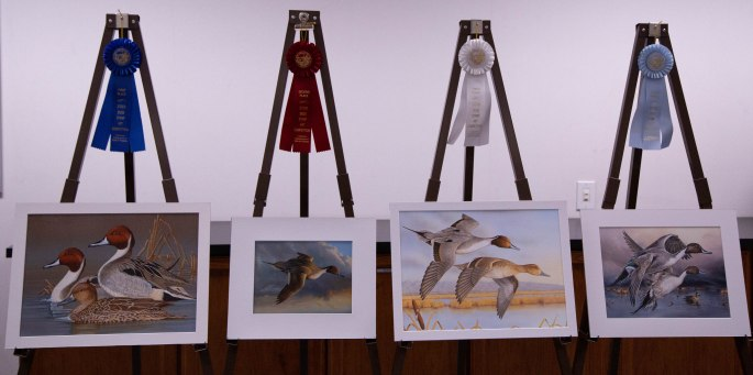 2019 Duck Stamp Art Contest Winners