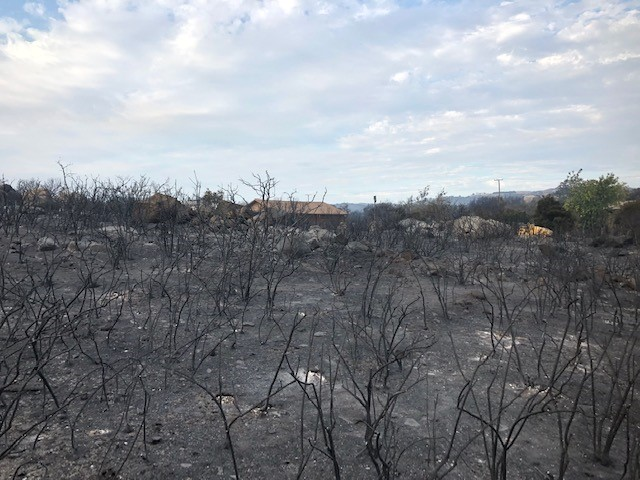 fire damage at ecological reserve
