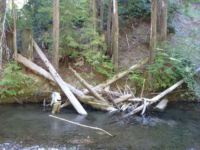 Little North Fork of the Navarro River, Mendocino County.