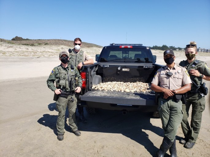 Wildlife officers with seized undersize clams